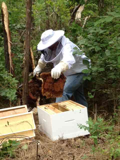 Imkerpak beschemende kleding tegen bijensteken